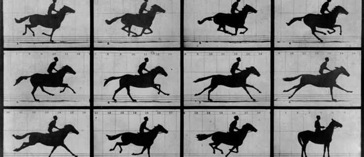 cavalo-em-movimento